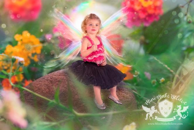 Eva-Fairy-Finalc